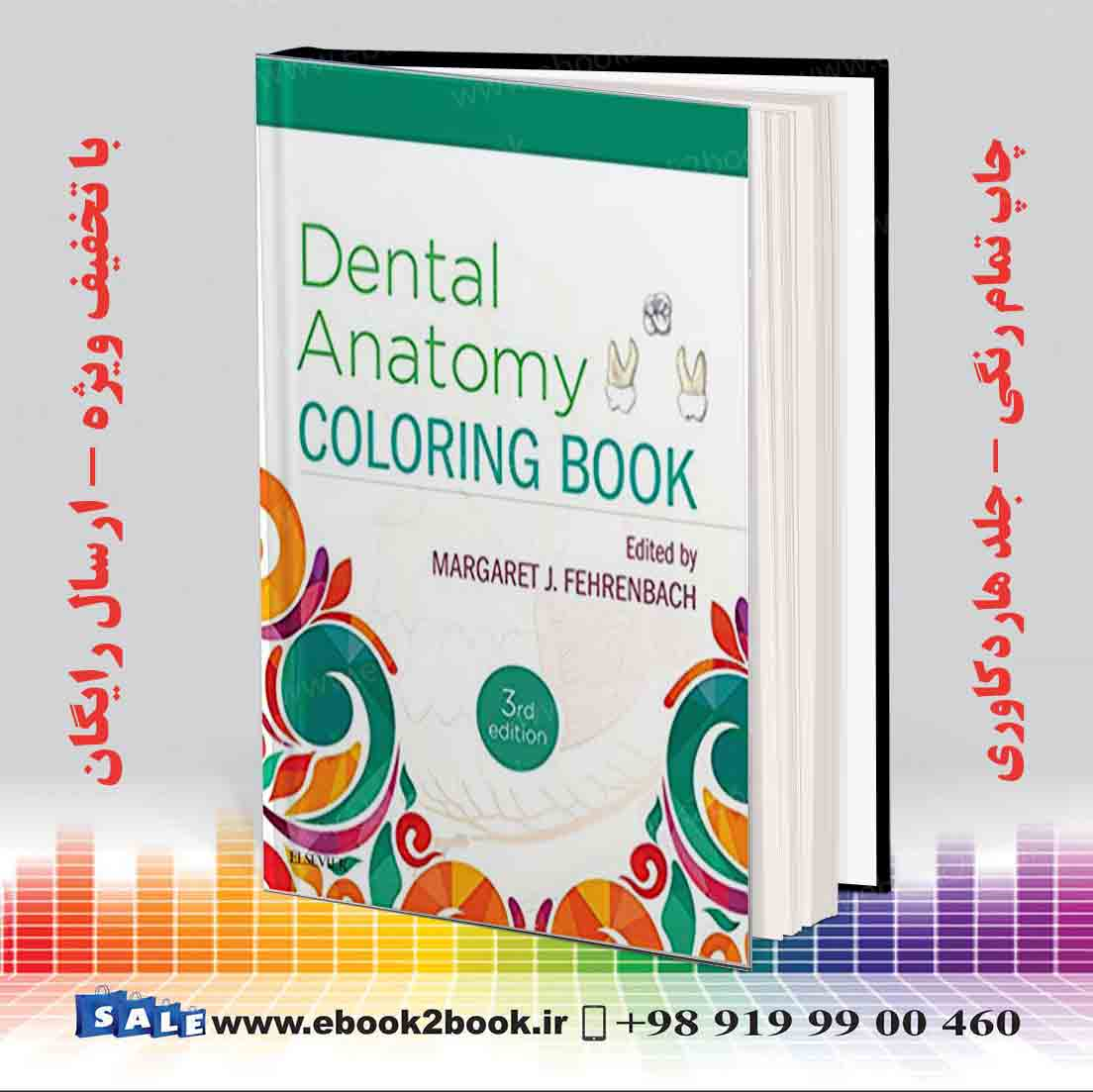 Images of Dental Anatomy Coloring Book - Sabadaphnecottage